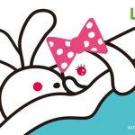 news_usao1 – 白と水色のカーネーション