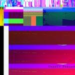 ukpd_098 – 白と水色のカーネーション