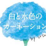 news_shiroto – 白と水色のカーネーション