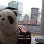 ukpd_103 – 白と水色のカーネーション