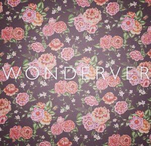 wonderver2