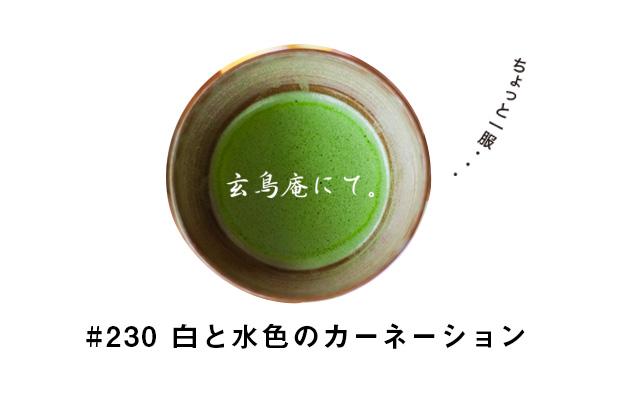 #230 「玄鳥庵」という茶室でお茶会。